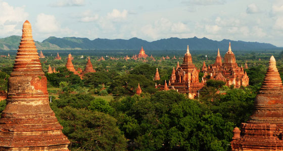 R-560-04-bagan-Author-holycowproducts