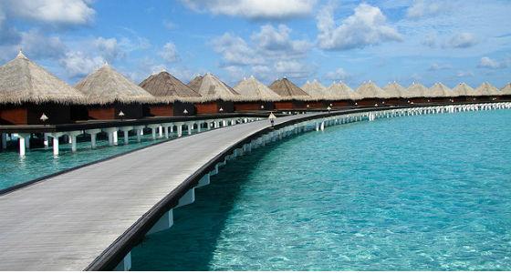 maldivas---Carlitos