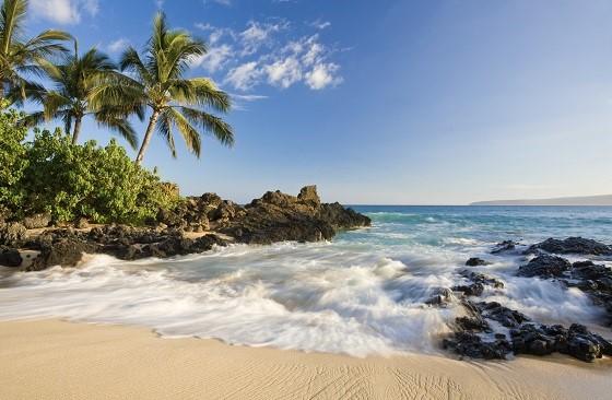 beach tropical maui hawaii