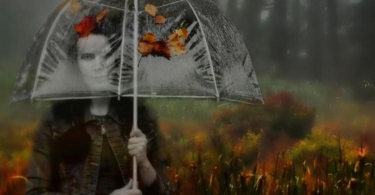 Pioggia tra gli ombrelli.