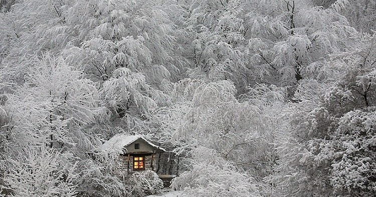 tiny-house-fairytale-nature-landscape-photography-25__880-750x393