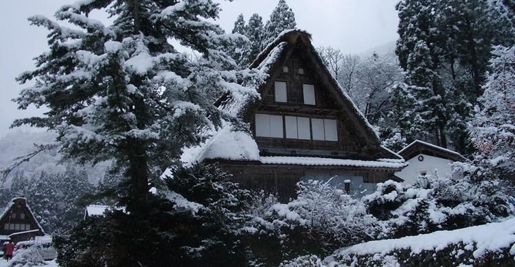gokoyama