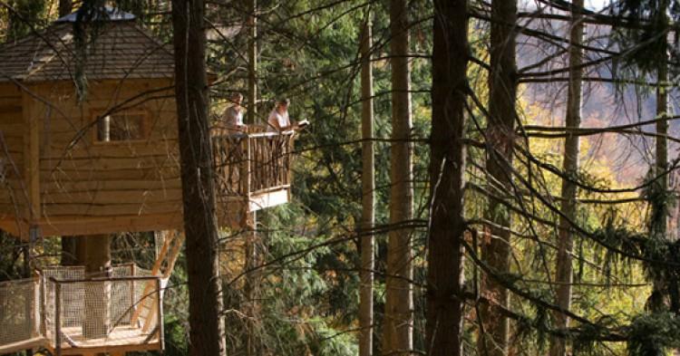 cabanes-als-arbres-750x393