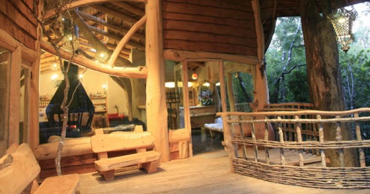 Nidos-de-Pucon-Tree-Lodge-750x393