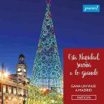 Qu te parecera pasar las navidades en Madrid? Descubre cmohellip