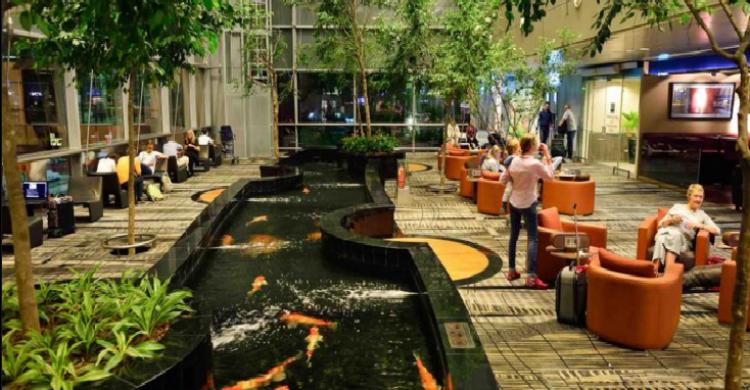 Changi-Sorbis-Shutterstock