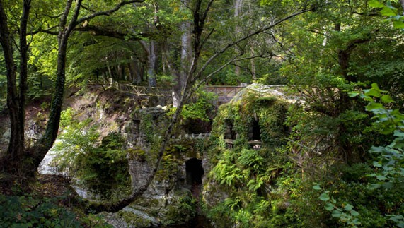 Tollymore-Forest-635291965624947841