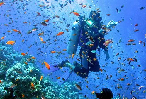 subacquea_e_snorkeling