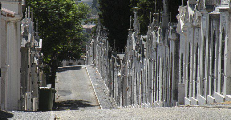 Cementerio-dos-Prazeres-Flickr
