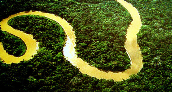 amazonia-lubasi