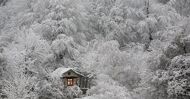 tiny-house-fairytale-nature-landscape-photography-25__880-750x393