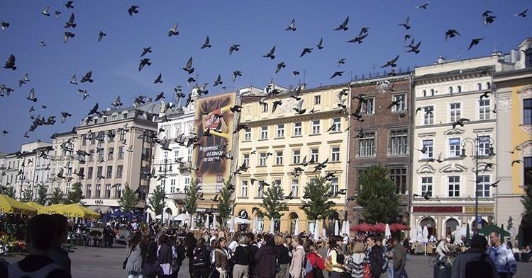 Le 6 città più belle della Polonia
