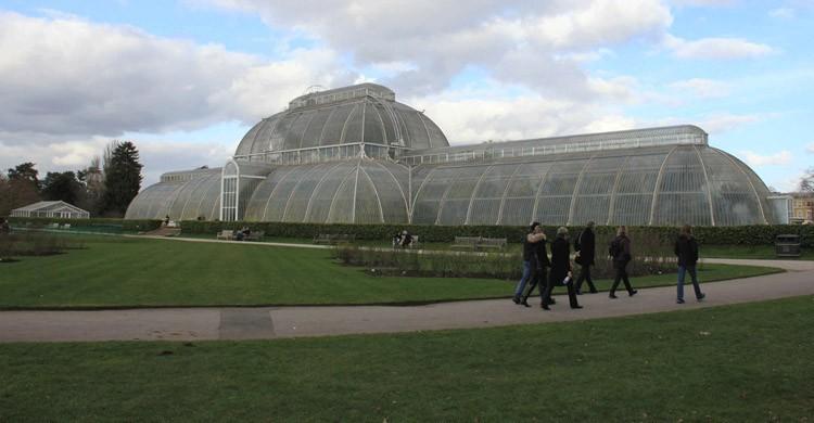 En-Kew-el-Royal-Botanic-Gardens.-Karen-Roe-Flickr.