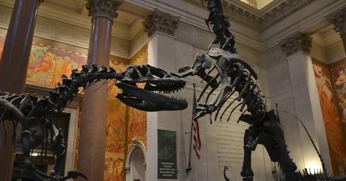 Museo-Nacional-de-Historia-Natural-Flickr