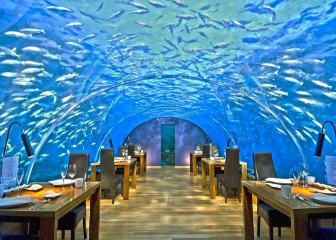 5-ithaa-undersea-restaurant-in-rangali-island-maldives