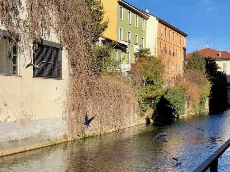 Esci dai soliti itinerari! 7 posti nascosti di Milano