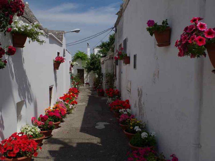 ad Alberobello il festival città dei trulli