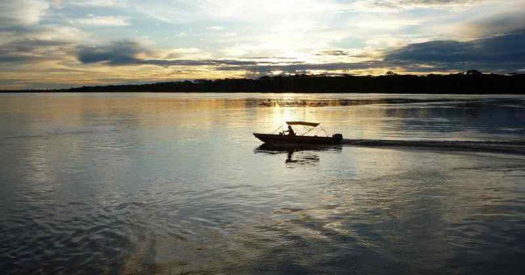 Culinaria amazzonica: i pesci fluviali che ti faranno leccare i baffi