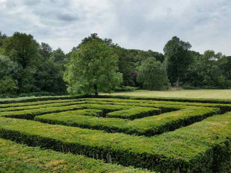 Tra Italia, Francia e Inghilterra, alla scoperta dei giardini labirinto più belli