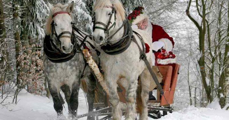 Consigli per preparare un viaggio in Lapponia e conoscere Babbo Natale