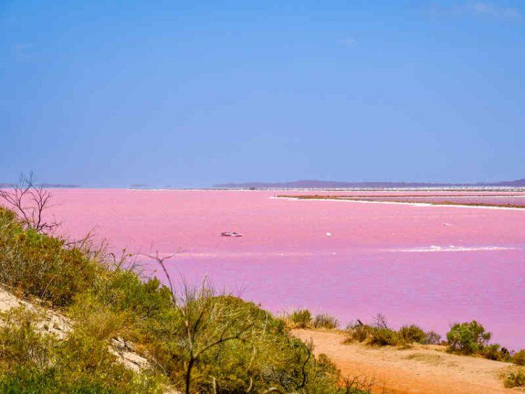 Lago Rosa, lo spettacolo naturale del lago Hillier