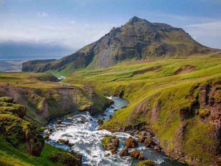 Foreste distrutte dai vichinghi, in Islanda è partita la riforestazione